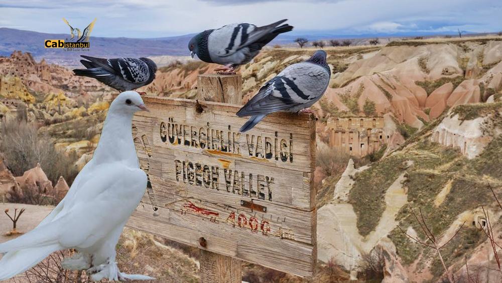 best way to visit  Pigeon valley