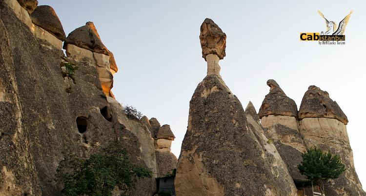 جولة وادي باساباجي